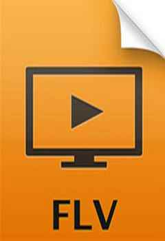 Play FLV in Windows Media Player Easily